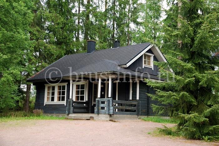 Покрашенный лесной дом