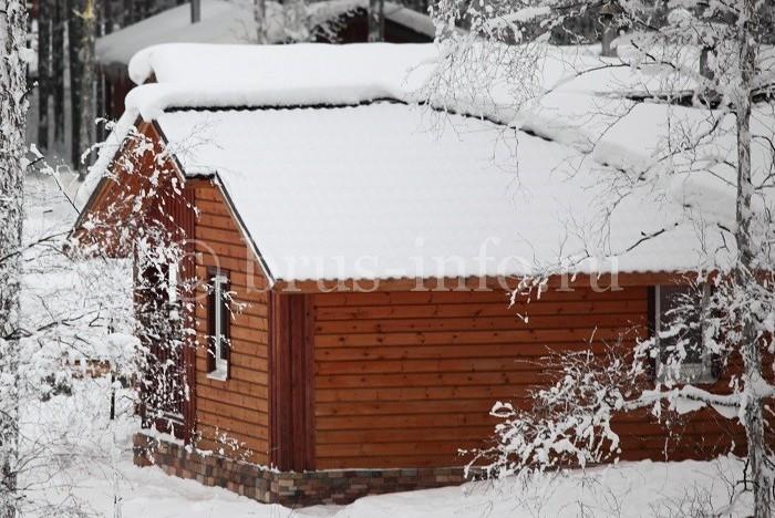 Деревянный дом  в зимнем лесу