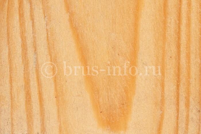 Текстура хвойной древесины