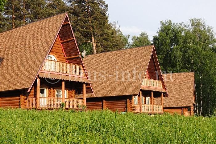 Бревенчатый дом с двухскатной крышей