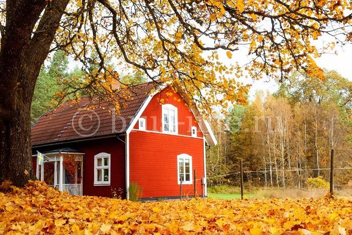 Дом с отделкой стен лакокрасочными материалами
